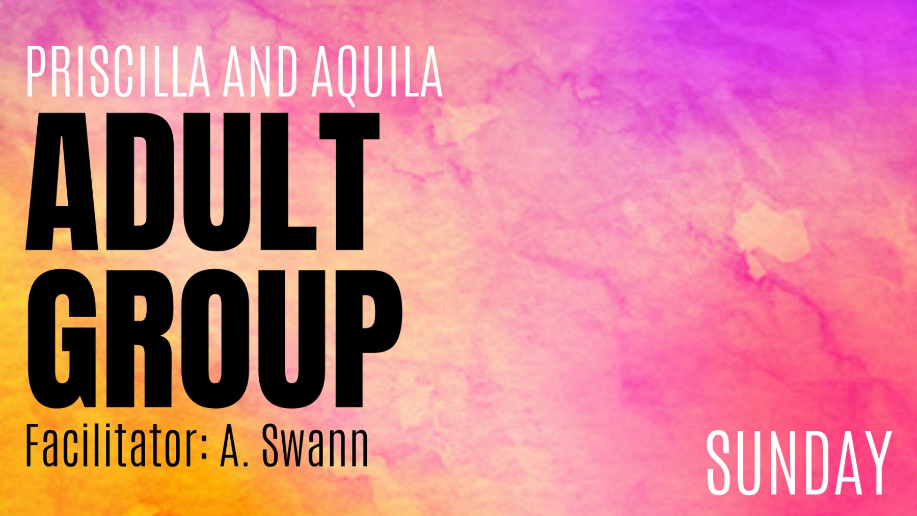 Priscilla & Aquila Adult Group